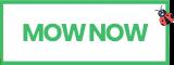 Logo Image - MOW NOW Canada
